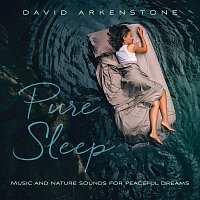 David Arkenstone – Pure Sleep