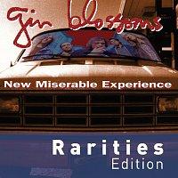 Přední strana obalu CD New Miserable Experience [Rarities Edition]