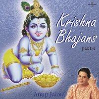 Přední strana obalu CD Krishna Bhajans Vol. 2
