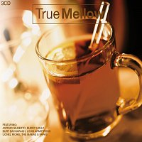 Různí interpreti – True Mellow 3 CD Set