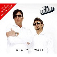 The Disco Boys – What You Want