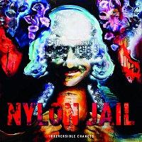 Nylon Jail – Irreversible Changes