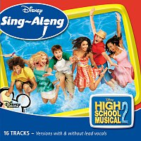 Různí interpreti – Disney Singalong - High School Musical 2