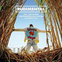 Rudimental, Jess Glynne, Macklemore, Dan Caplen – These Days (feat. Jess Glynne, Macklemore & Dan Caplen) [Rudimental VIP]