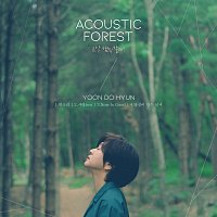 Yoon Do Hyun – The Acoustic Forest
