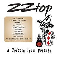 Různí interpreti – ZZ Top – A Tribute From Friends