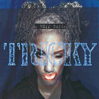 Tricky – A Ruff Guide To
