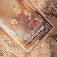 Morgan Page, Stella Rio, Damon Sharpe – Beautiful Disaster (Futuristic Polar Bears Remix)