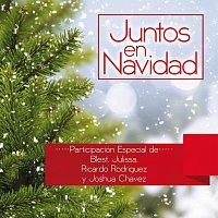 Různí interpreti – Juntos En Navidad
