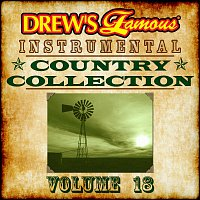 The Hit Crew – Drew's Famous Instrumental Country Collection [Vol. 18]