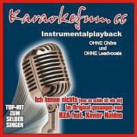 Karaokefun.cc VA – Ich kenne nichts - Instrumental - Karaoke