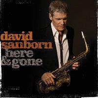 David Sanborn – Here & Gone