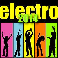 Různí interpreti – Electro 2014