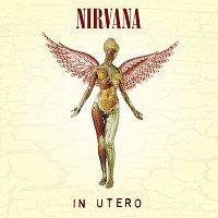 Přední strana obalu CD In Utero [Explicit Version]