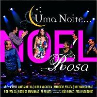 Různí interpreti – Uma Noite Noel Rosa