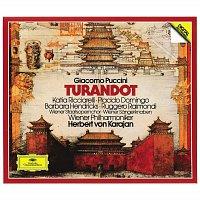 Katia Ricciarelli, Plácido Domingo, Barbara Hendricks, Ruggero Raimondi – Puccini: Turandot [2 CD's]