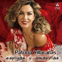 Patricia Villacanas – Espigas Y Amapolas