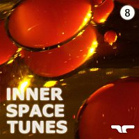 Brown, Smith, Grey – Inner Space Tunes, Vol. 8