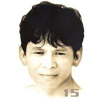 Dato' Sudirman – 15