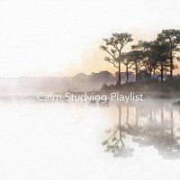 Chris Snelling, Nils Hahn, Jonathan Sarlat, Bella Element, Chris Mercer, Joefish – Calm Studying Playlist