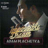 Adam Plachetka – Impossible Dream