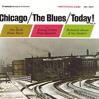 Různí interpreti – Chicago / The Blues / Today!