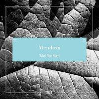 Mendoza – What You Need