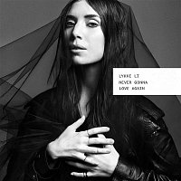 Lykke Li – Never Gonna Love Again
