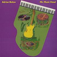 Adrian Belew – Mr. Music Head