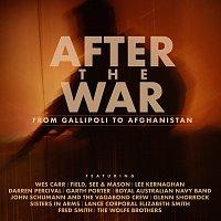 Různí interpreti – After The War