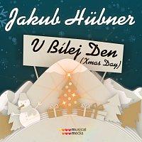 Jakub Hübner – V bílej den / Xmas Day