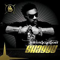 Shaggy – Intoxication