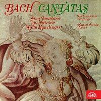Ars rediviva – Bach: Kantáty
