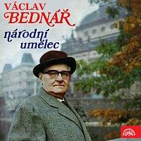 Národní umělec Václav Bednář