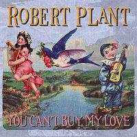 Přední strana obalu CD You Can't Buy My Love