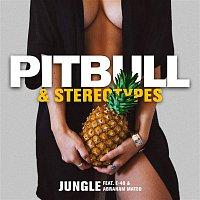 Pitbull, Stereotypes, E-40, Abraham Mateo – Jungle
