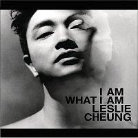 Přední strana obalu CD I am what I am
