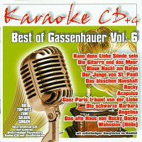 Karaokefun.cc VA – Best of Gassenhauer Vol.6