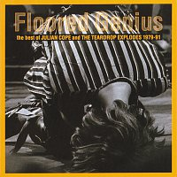 Přední strana obalu CD Floored Genius: The Best Of Julian Cope And The Teardrop Explodes 1979-91