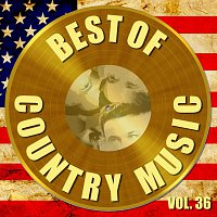 The Carter Family, Pat Boone – Best of Country Music Vol. 36