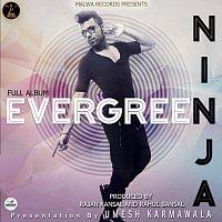 Ninja – Evergreen
