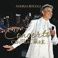 Přední strana obalu CD Concerto: One Night In Central Park