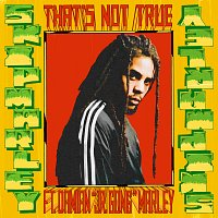 "Skip Marley, Damian ""Jr. Gong"" Marley – That's Not True"