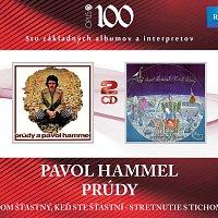 Pavol Hammel – Som šťastný, keď ste šťastní / Stretnutie s tichom