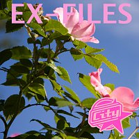 City – Ex-Files