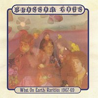 Blossom Toes – What On Earth: Rarities 1967-69