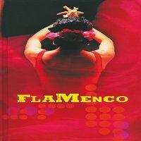Různí interpreti – Flamenco