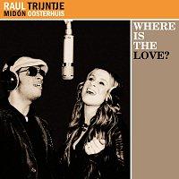 Raul Midón – Where is the Love?