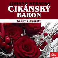 různí interpreti – Strauss: Cikánský baron. Scény z operety