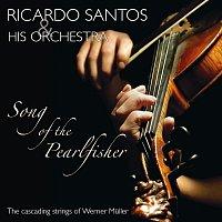 Přední strana obalu CD Song of the Pearlfisher - The Cascading Strings of Werner Müller
